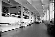 09/08/1962<br /> 08/09/1962<br /> 09 August 1961<br /> Bolands Bakery feature, interiors of Bolands factory, Grand Canal Street, Dublin. View of part of the production line.
