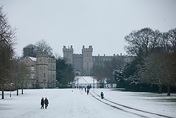 Windsor, UK. 1st February, 2019. An overnight snowfall in front of Windsor Castle on the Long Walk in Windsor Great Park. More snow is expected to fall during the morning in Berkshire and scores of schools will remain closed for the day.