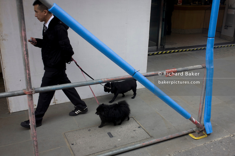 Man with two small pet dogs walk past padded construction scaffolding in London street.