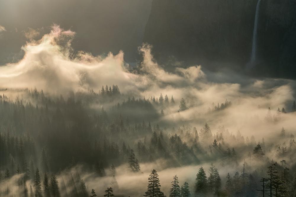 Morning Mist Rising, Yosemite Valley, Yosemite National Park, California 2016
