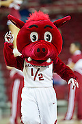 FAYETTEVILLE, AR - NOVEMBER 13:  Mascot of the Arkansas Razorbacks performs during a game against the Southern University Jaguars at Bud Walton Arena on November 13, 2015 in Fayetteville, Arkansas.  The Razorbacks defeated the Jaguars 86-68.  (Photo by Wesley Hitt/Getty Images) *** Local Caption ***