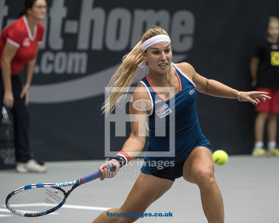 Dominika Cibulkova (SVK) on Day Three of the WTA Generali Ladies Linz Open at TipsArena, Linz<br /> Picture by EXPA Pictures/Focus Images Ltd 07814482222<br /> 12/10/2016<br /> *** UK &amp; IRELAND ONLY ***<br /> <br /> EXPA-REI-161012-5019.jpg