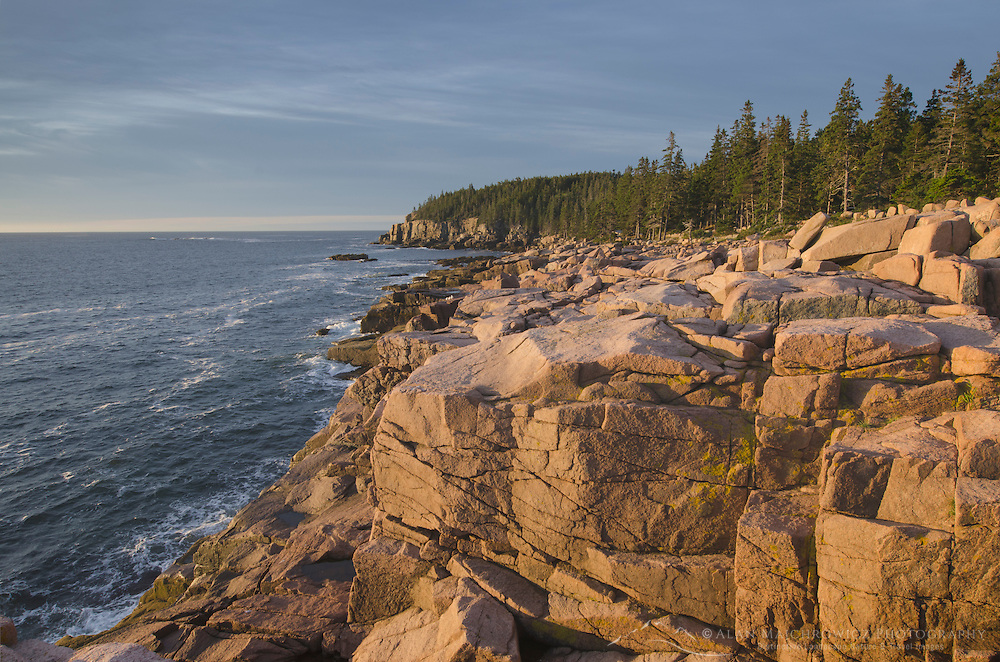 Otter Cliffs Acadia National Park