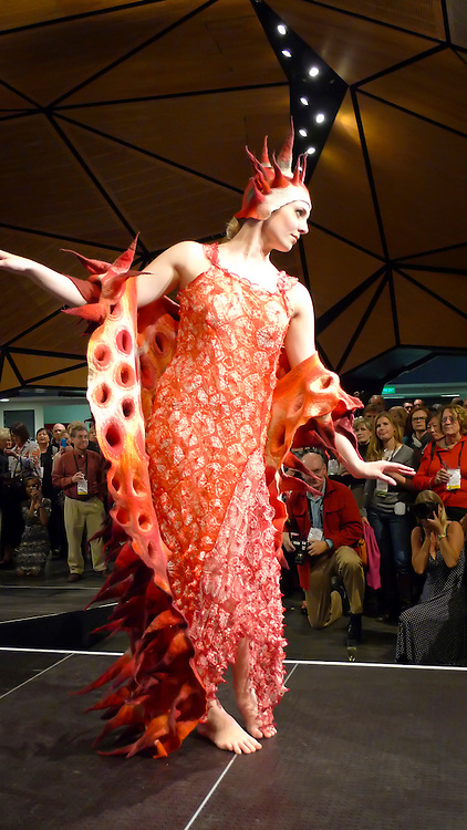 World of WearableArt, fashion show, Wellington, North Island, New Zealand