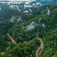 In one of the most magnificent remaining stands of virgin rainforest in northern Borneo, the Temburong River winds its way into the interior of the 500 sq. km. Ulu Temburong National Park in Brunei. With most of this tiny nation's wealth coming from offshore oil, its forests have largely been spared from logging and oil palm plantations.