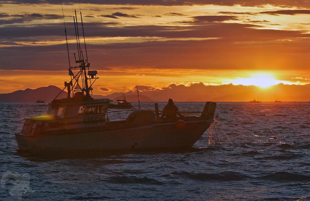 The fishing vessel Bella Donna sets it's gillnet gear in the Gulf of Alaska outside the Copper River Delta. Copper River salmon are a world famous commodity.