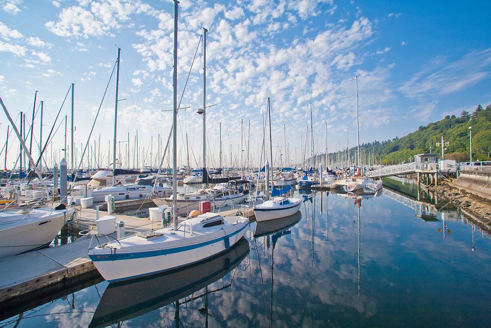 United States, Washington, Seattle. Sailboats moored at Shilshole Bay marina.