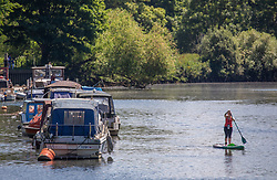 © Licensed to London News Pictures. 21/05/2020. London, UK. A women paddle boards along the River Thames in Richmond in South West London as weather experts predict the another warm day with a high of 27c. Last week the Government eased the law on lockdown to let people spend more time outside to enjoy sunbathing and picnicking. Photo credit: Alex Lentati/LNP