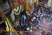 Flower petals rain down on devotees and revellers gathered at the Bankey Bihari Temple in Vrindavan during the opening of a 5 day festival of worship during Holi, the spring festival., This temple is widely regarded as the birthplace of Holi.