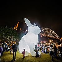 VIVID Festival light display
