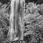 Golden Falls - Oregon - Infrared Black & White
