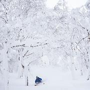 Jake Cohn, Rusutsu Japan