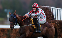 Red Infantry ridden by Robert Dunne on the way to second place in The Betfair London National Handicap Chase during day two of the Betfair Tingle Creek Christmas Festival at Sundown Park Racecourse, Sandown.