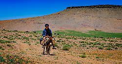 A shepherd on a donkey in the Atlas Mountains, Morocco<br /> <br /> (c) Andrew Wilson | Edinburgh Elite media