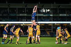 Huw Taylor of Worcester Warriors  - Rogan Thomson/JMP - 04/11/2016 - RUGBY UNION - Sixways Stadium - Worcester, England - Worcester Warriors v Bristol Rugby - The Anglo Welsh Cup.