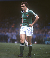Martin O'Neill, footballer, Norwich City, appearing for N Ireland against Scotland at Windsor Park, Belfast. 19810063MON3..Copyright Image from Victor Patterson, 54 Dorchester Park, Belfast, United Kingdom, UK...For my Terms and Conditions of Use go to http://www.victorpatterson.com/Victor_Patterson/Terms_%26_Conditions.html