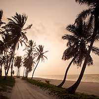 A setting sun provides a warm glow and a beautiful view of a beach road along the shore of the Dominican republic.