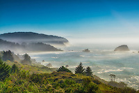 There is nothing like the California Coastline. That was evident here as I climbed high atop the cliffs in the Del Norte Redwoods State Park on a windy, hazy November afternoon. It just takes your breath away to stand in this spot in person!