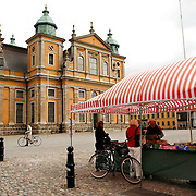 Kalmar Cathedral, built in the 1700's,  is one of the few unaltered buildings from Sweden's period as a great power. The baroque altar was designed in 1704 by Nikodemus Tessin, the younger.  Family coat of arm linked to a great battles at sea during the second half of the 17th century are displayed in the church.<br />