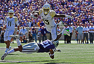 Free safety Kendall Adams #21 of the Kansas State Wildcats trips up wide receiver Tony Nicholson #13 of the Baylor Bears during the first half on September 30, 2017 at Bill Snyder Family Stadium in Manhattan, Kansas.