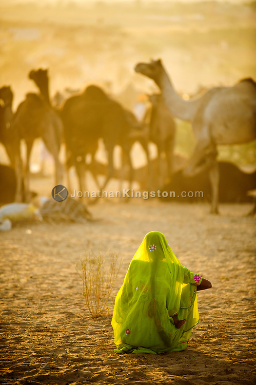 A woman breast feeding in the desert with camels in the background.