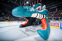 KELOWNA, CANADA - DECEMBER 6: Ogi on December 6, 2014 at Prospera Place in Kelowna, British Columbia, Canada.  (Photo by Marissa Baecker/Shoot the Breeze)  *** Local Caption ***