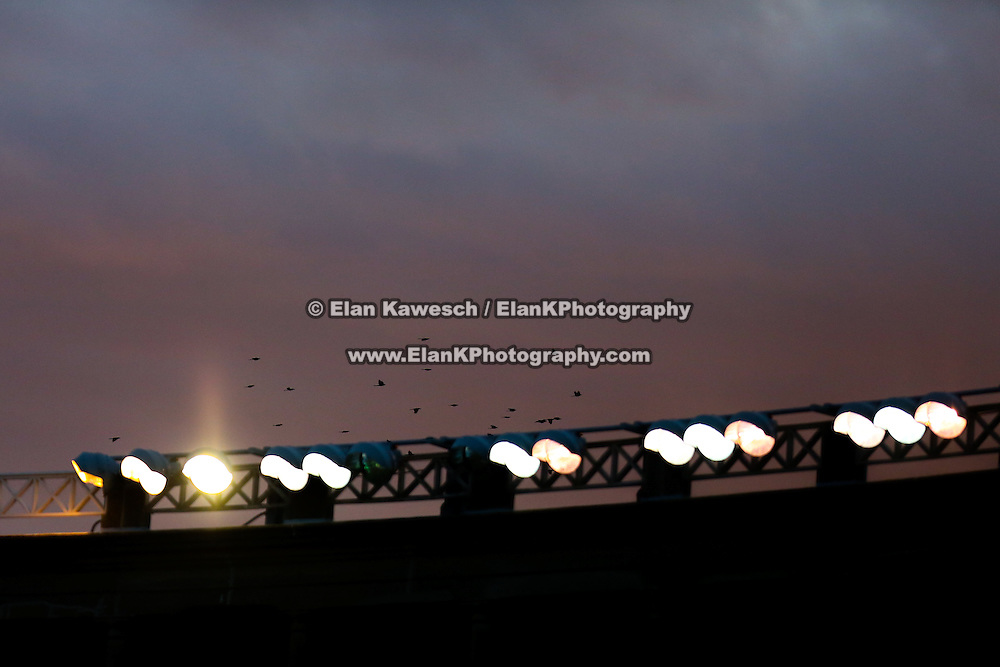 A flock of birds flies over the field during the game at Harvard Stadium on August 9, 2014 in Boston, Massachusetts. (Photo by Elan Kawesch)