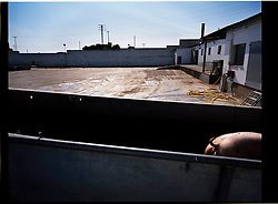 2012.Binefar, Huesca.<br />