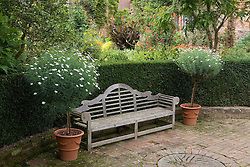 Lutyens bench with standard terracotta pots of Argyranthemum foeniculaceum on either side at Sissinghurst Castle Garden