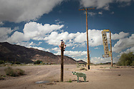 USA, California, Mojave desert, Route 66, Newberry Springs, Uncle Sam That darn Hyena again
