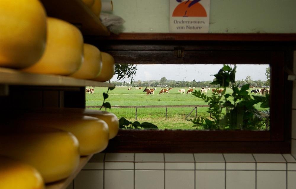 Zoeterwoude, 19  aug 2004.Magdalene en Nico Captein uit Zoeterwoude hebben met hun boerenkaas de Jan den Besten trofee 2004 gewonnen..Boerenkaas, kaasmakerij, kaas, landbouw..Foto (c) Michiel Wijnbergh