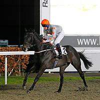 Thecornishcockey and Adam Kirby winning the 7.30 race