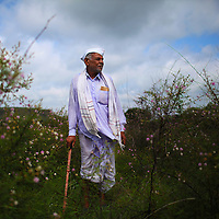 A farmer from Aurangabad, India looks out at his second failing cotton crop of the season, the worst drought he has seen in 25 yrs. Climate change has altered the moonsoon season in India, these kind of rainfall failures have a lot of real human effects, large groups of people lose their lively hood and there becomes acute drinking water problems since rains are needed to recharge ground water.