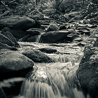 Mountain stream in The Great Smoky Mountain National Park
