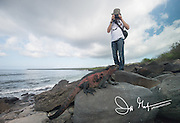 A tourist photographs a marine iguana on Espanola island, part of the Galapagos islands of Ecuador.