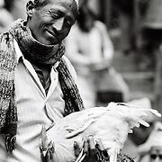 La mort du Coq approche à grand pas, mais il ne le sait pas! Dakshin Kali, Népal. 2008