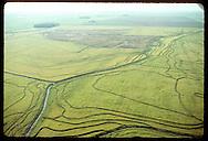 Aerial view of rice fields striped w/ dikes-- harvested field far off is darker; Granja Bretanhas. Brazil