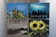 4 Photo Magnets of California flowers, landscape and nature all with inspirational quotes to inspire. Santa Monica, SoCal, Sunflowers, Dove, Ocean, Beach Life.
