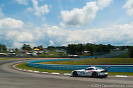 #93 Riley Motorsports ViperExchange.com Dodge Viper SRT: Al Carter, Marc Goossens, Cameron Lawrence
