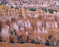 View of Bryce Canyon hoodoos from canyon rim, Bryce Canyon National Park Utah USA