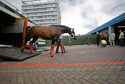 "Departure of the Olympic Horses from<br /> Animal Hotel  KLM - Shiphol 2008<br /> Photo © Dirk Caremans-Hippo Foto<br /> <br /> <br /> <br /> <br /> <br /> <br /> <br /> <br /> <br /> <br /> <br /> <br /> """"""""""""""""""éé""""""""""""""""""""""""""""""""éééééééééééééééé<br /> <br /> <br /> <br /> <br /> <br /> <br /> <br /> <br /> <br /> <br /> <br /> <br /> <br /> <br /> <br /> <br /> <br /> <br /> <br /> <br /> <br /> <br /> <br /> <br /> <br /> <br /> <br /> <br /> <br /> <br /> <br /> <br /> <br /> <br /> <br /> <br /> <br /> <br /> <br /> <br /> <br /> <br /> <br /> <br /> <br /> <br /> <br /> <br /> <br /> <br /> <br /> <br /> <br /> <br /> <br /> <br /> <br /> <br /> <br /> <br /> <br /> <br /> <br /> <br /> <br /> <br /> <br /> <br /> <br /> <br /> <br /> <br /> <br /> <br /> <br /> <br /> <br /> <br /> <br /> <br /> <br /> <br /> <br /> <br /> <br /> <br /> <br /> <br /> <br /> <br /> <br /> <br /> <br /> <br /> <br /> <br /> <br /> <br /> <br /> <br /> <br /> <br /> <br /> <br /> <br /> <br /> <br /> <br /> <br /> <br /> <br /> <br /> <br /> <br /> <br /> <br /> <br /> <br /> <br /> <br /> <br /> <br /> <br /> <br /> <br /> <br /> <br /> <br /> <br /> <br /> <br /> <br /> <br /> <br /> <br /> <br /> <br /> <br /> <br /> <br /> <br /> <br /> <br /> <br /> <br /> <br /> <br /> <br /> <br /> <br /> <br /> <br /> <br /> <br /> <br /> <br /> <br /> <br /> <br /> <br /> <br /> <br /> <br /> <br /> <br /> <br /> <br /> <br /> <br /> <br /> <br /> <br /> <br /> <br /> <br /> <br /> <br /> <br /> <br /> <br /> <br /> <br /> <br /> <br /> <br /> <br /> <br /> <br /> <br /> <br /> <br /> <br /> <br /> <br /> <br /> <br /> <br /> <br /> <br /> <br /> <br /> <br /> <br /> <br /> <br /> <br /> <br /> <br /> <br /> <br /> <br /> <br /> <br /> Photo © Dirk Caremans - Hippo Foto"