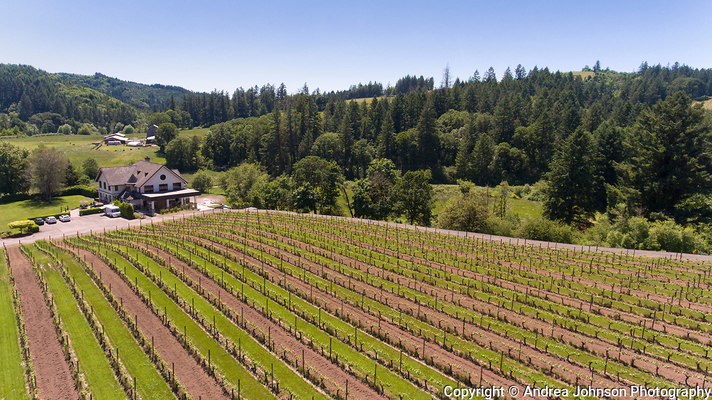 Memorial Day weekend open house at Beacon HIll winery & Vineyard, Yamhill-Carlton AVA of Oregon's northern Willamette Valley.
