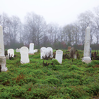 This group of graves,standing and leaning along Highway 61, date back to the 19th Century.&lt;br/&gt;&lt;br/&gt;<br />