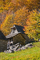 Golden autumn trees and stone cottage at the end of Valle Verzasca in Ticino, Southern Switzerland.