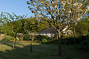 A rural bungalow and an orchard of fruit trees with on fertile land where homegrown veg and fruit is produced, on 5th May 2018, in Wrington, North Somerset, England.