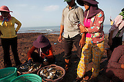 Daily activities at the crab market in Kep. The crabs are kept in baskets that float in the sea and are dragged in when a customer comes to buy. The coastal town of Kep in the 1950's and 60's was the most exclusive retreat for the elite of Cambodia. Large villas, including those of the Kings and Prime Minister, dotted this untouched coastline. Then the Khmer Rouge took power and all the villas were either destroyed or left to the jungle, many even today remain in a dilapidated state. But now Kep is rising again and with careful planning may return to its former glory as Cambodia's most exclusive retreat.
