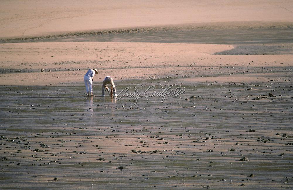 A couple beachcombing at low tide in Careening Bay. Kimberley, W. AUSTRALIA