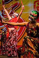 Ciudad de Panamá, 14 Febrero, 2010.La comunidad China en Panamá celebró el nuevo año chino bajo la influencia del tigre que por la naturaleza fuerte, tenaz y agresiva de este animal, significa que el 2010 será un año difícil..Con el ritual del despertar y danza del león, música y bailes  típicos, la comunidad china inicio su celebración del año nuevo en el Centro de Convenciones Atlapa,.Ramon Lepage / Istmophoto..