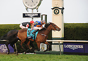 Jockey Ryan Moore rides Found to win the Longines Breeders' Cup Turf race at Keeneland Racecourse on Saturday, Oct. 31, 2015 in Lexington, KY.  Longines, the Swiss watch manufacturer known for its elegant timepieces, is the Official Watch and Timekeeper of the Breeders' Cup World Championships and the Triple Crown. (Photo by Diane Bondareff/Invsion for Longines/AP Images)