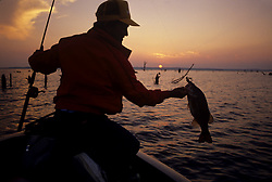Silhouette of a fisherman in a boat with a fresh caught fish from the lake and a colorful sunset sky reflecting on the water.